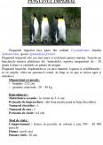 Imagine document Pinguinu Imperial