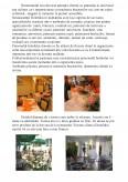 Imagine document Hotel Elizeu