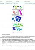 Imagine document Proteine