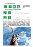 Imagine document Resurse turistice in Elvetia