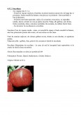 Imagine document Infiintarea unei plantatii pomicole