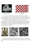 Imagine document Comparatie Escher - Vasarely