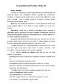 Imagine document Egalizarea si Cupajarea Vinului