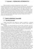 Analiza proprietatilor functionale ale neuronului