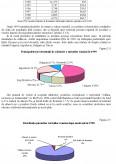 Studiu privind implicatiile strategiei turismului romanesc in fluxul international