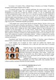 Rolul agentiilor sau departamentelor de publicitate