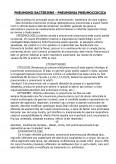 Imagine document Pneumonii Bacteriene