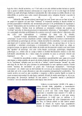 Macrotipologia Zodiacala Astrologia Zodiacul