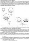 GP 080-2003 Ghid privind proiectarea si executia consolidarii prin precomprimare a structurilor din beton armat si a structurilor din zidarie