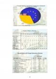 Analiza comparativa  a politicii de marketing in domeniul financiar - bancar - BRD