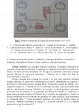 Imagine document Sistemul de Franare a Automobilului