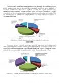 Analiza Performantelor Financiare la Nivelul Administratiei Publice Locale - Studiu de Caz - Primaria Babeni