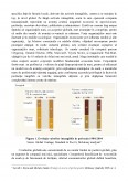 Impactul Expansiunii Oligopolurilor asupra Economiei Contemporane