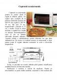 Imagine document Procesarea Alimentelor cu Microunde
