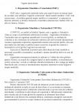 Organizatiile Internationale - Geografia Resurselor