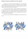 Imagine document Biochimie