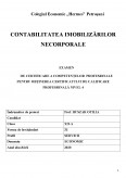 Imagine document Contabilitatea imobilizarilor necorporale