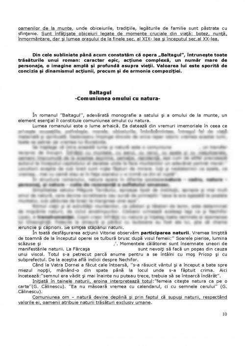 Referat Baltagul 115392 Graduo