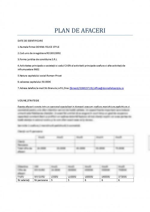 Proiect Plan De Afaceri Salon Infrumusetare 276536 Graduo